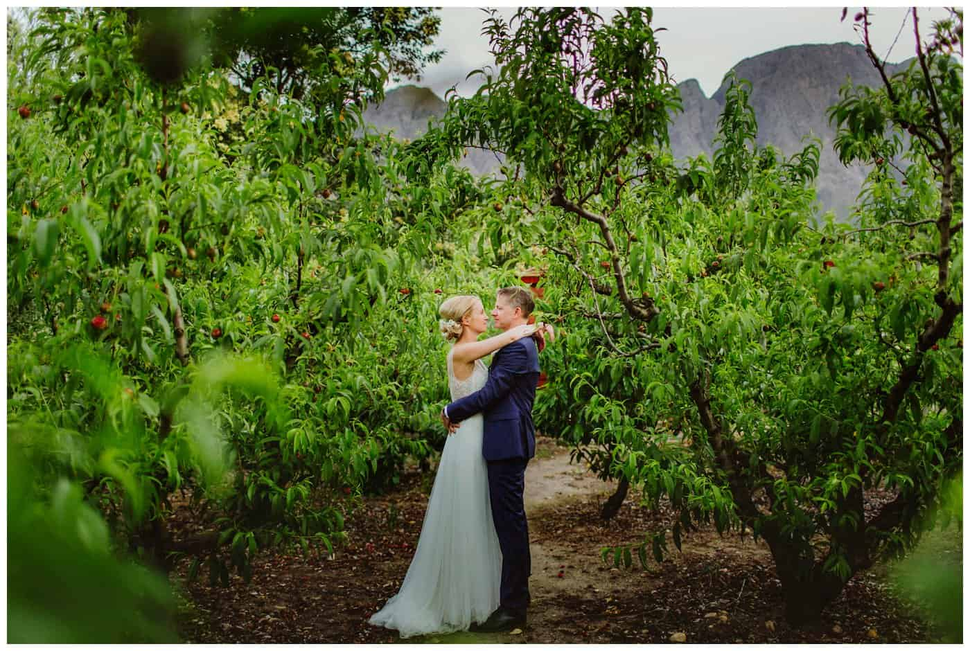 Franschhoek-wedding-photography_1097