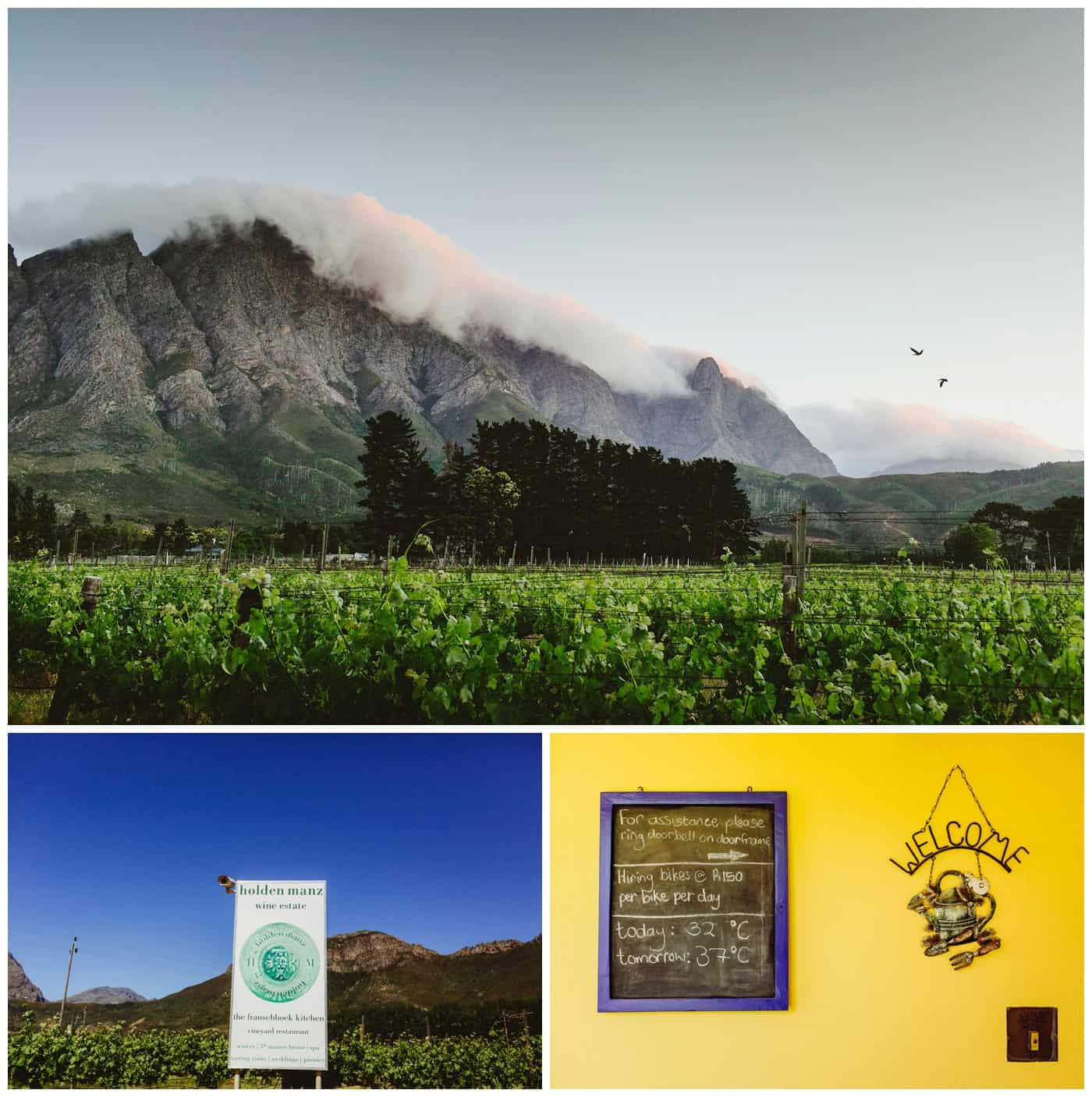 Franschhoek vineyards south africa