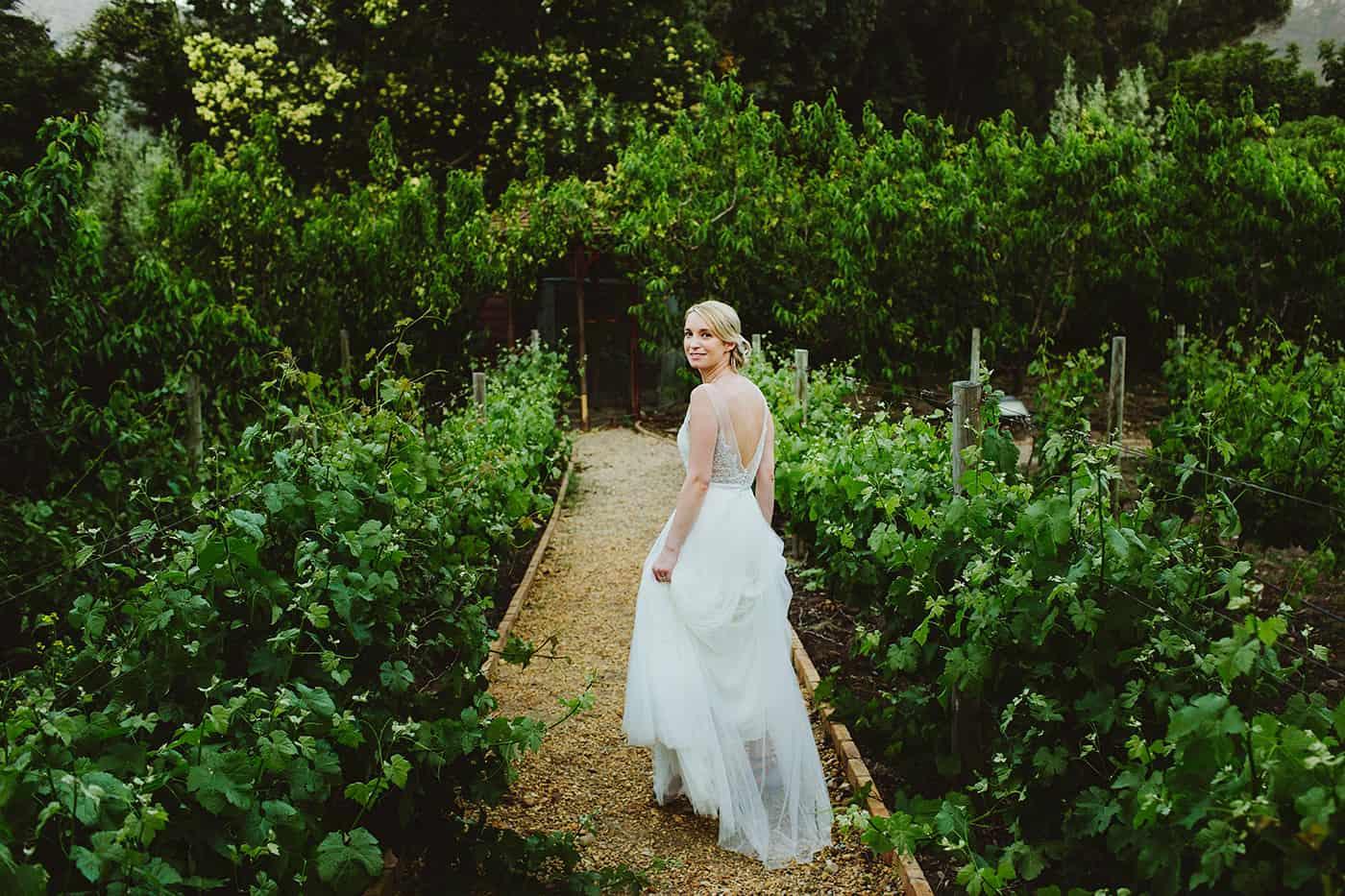 Franschhoek wedding pictures