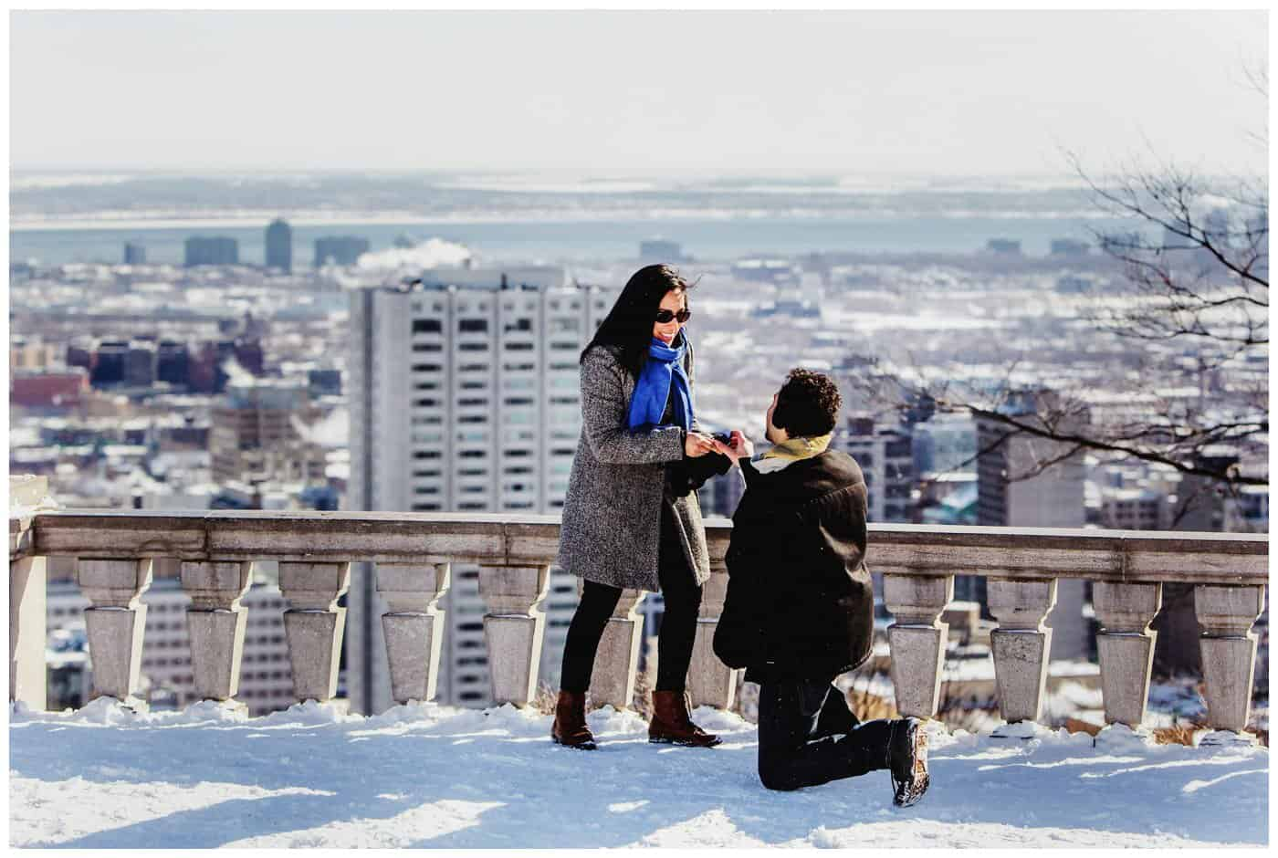 Mont Royal Proposal