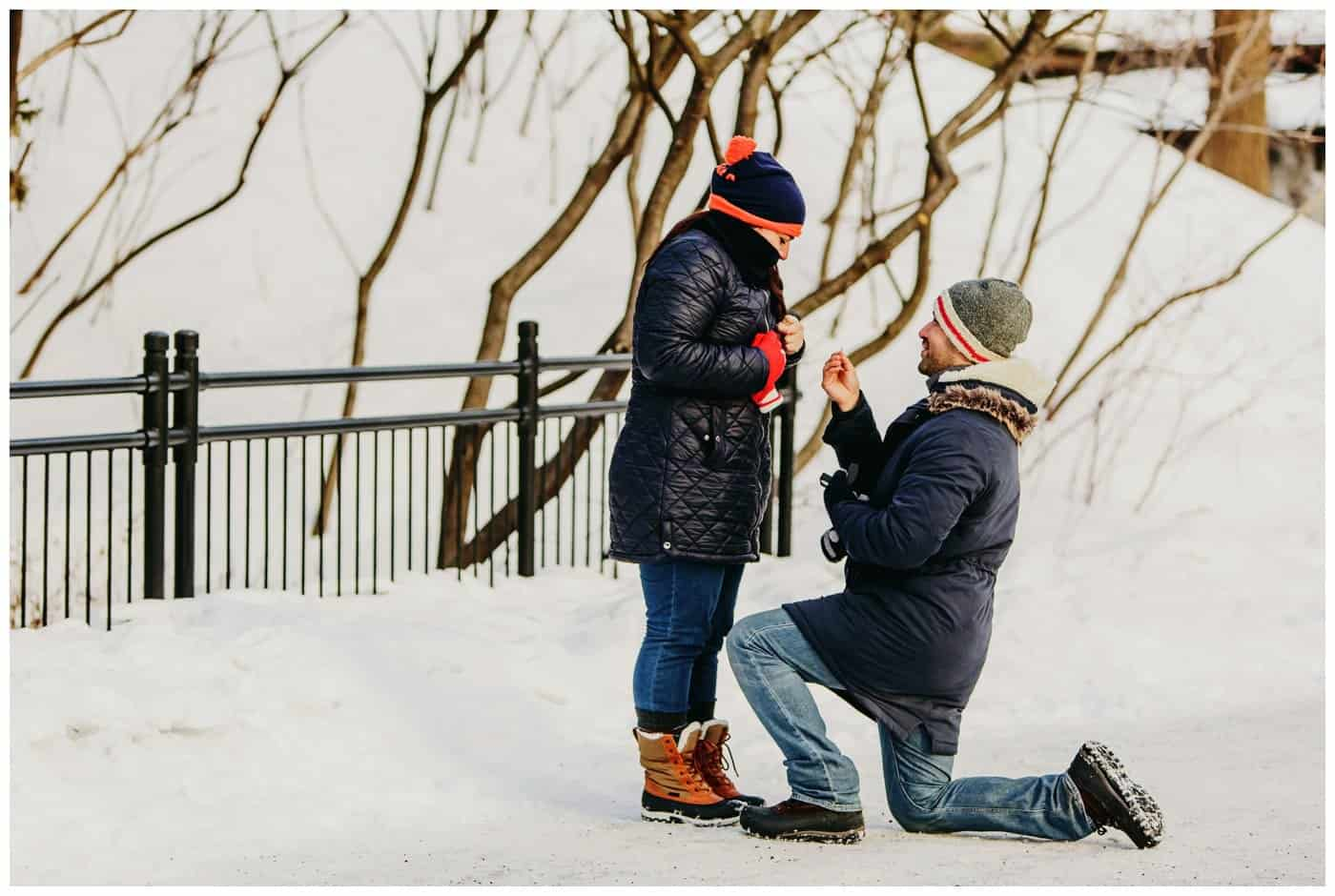 Surprise Proposal Mont Royal
