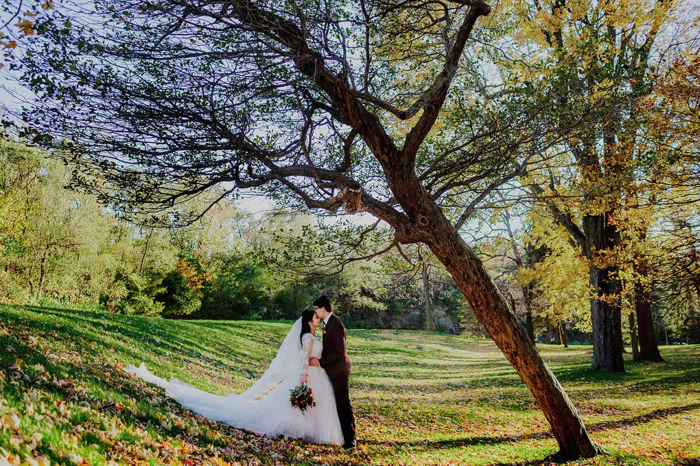 Portrait of a bride & groom under a crooked tree